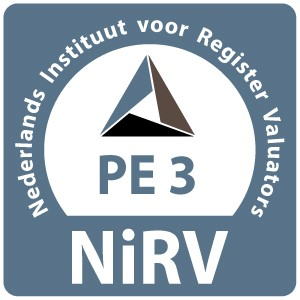 3 PE-punten NIRV.jpg